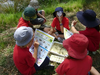 Darebin Creek Education