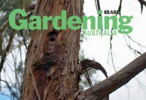 Gardening Australia features Darebin Creek Parklands.